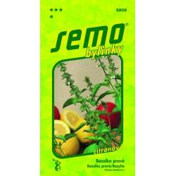 Bazalka pravá - Lime (citrónová)