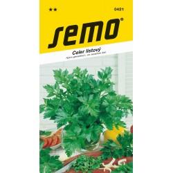 Celer listový - Jemný