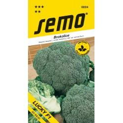 Brokolice - Lucky F1
